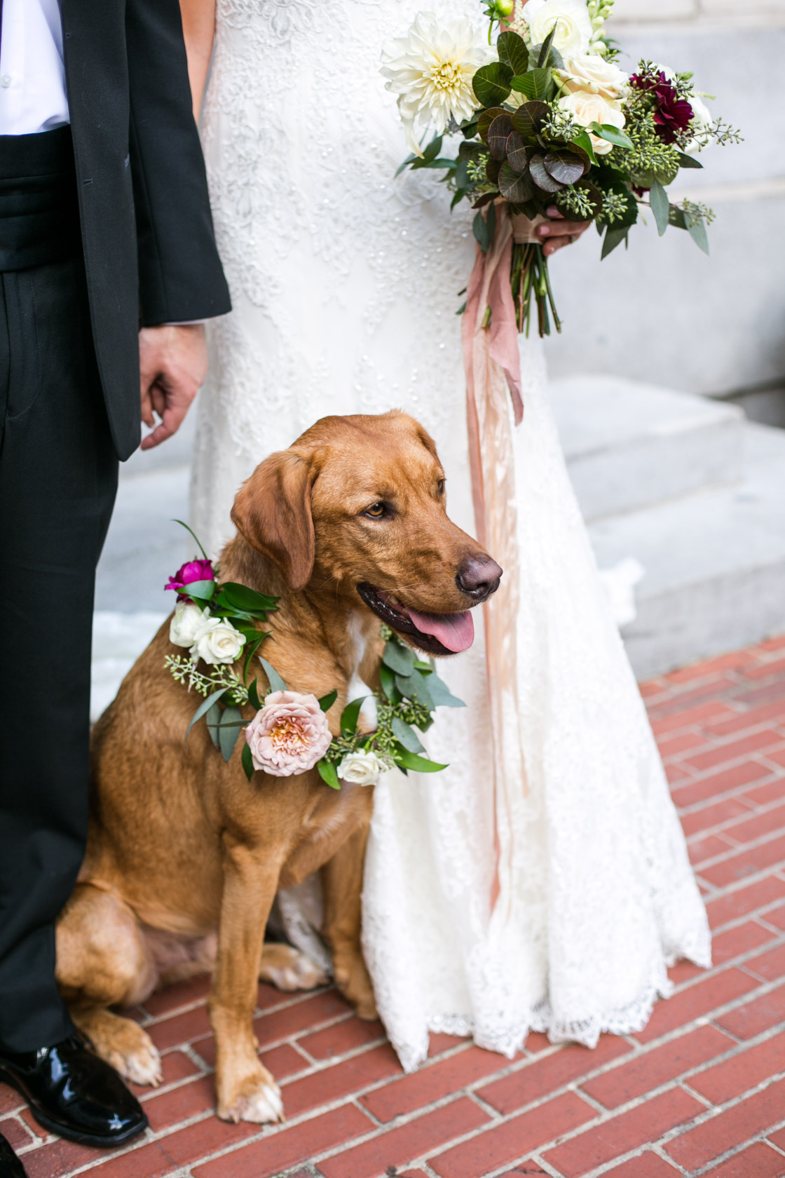 wedding floral dog collar Tutwiler Hotel Birmingham
